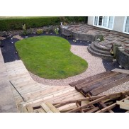 Garden progression...